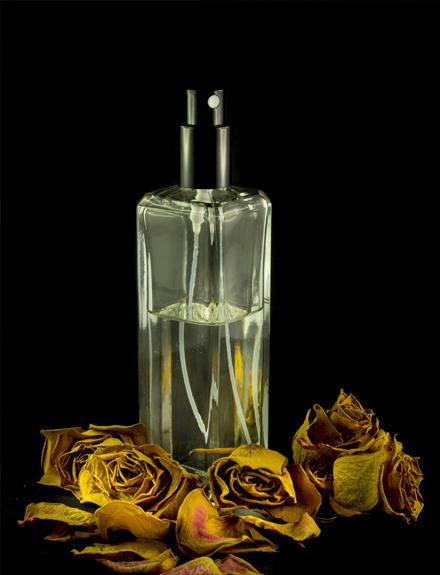 Renueva tu perfume este otoño