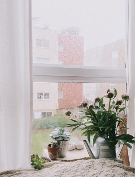 Tips para una casa acogedora